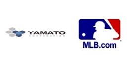 Apoio Beisebol.org
